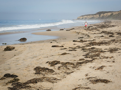 Morning Jog in Red, Crystal Cove SP CA