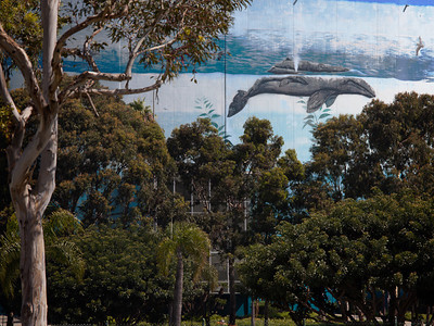 """""""Whale in the Trees"""", Long Beach CA"""