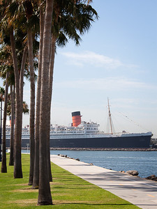 Queen Mary and Palms, Long Beach CA