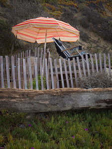 The Orange Umbrella, Crystal Cove SP CA