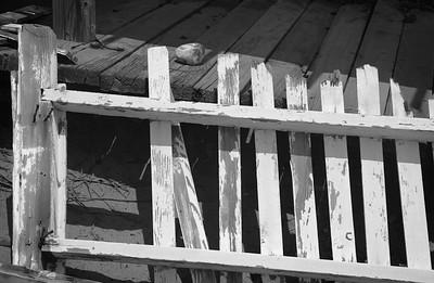 Broken Fence, Crystal Cove SP CA