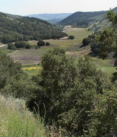 Descending Drum Canyon