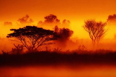 Morning Sunrise Along Mekong River, Thailand
