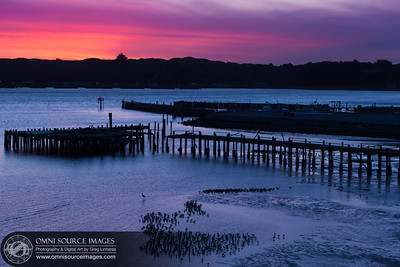 Bodega Bay Sunset - Sonoma Coast(Landscape)
