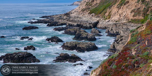 Bodega Head - Sonoma Coast California