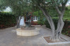 Viansa Winery Courtyard