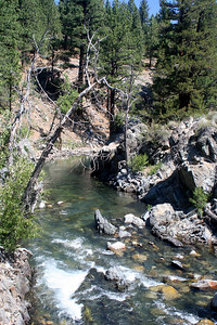 7/7/07 Leavitt Trail (crossing bridge over  West Walker River from Leavitt Meadows Campground). Off Sonora Pass Road (Hwy 108), Toiyabe National Forest, Mono County, CA