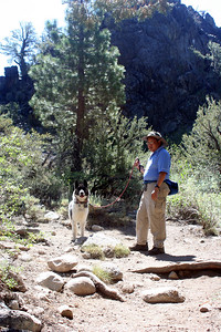 7/7/07 Leavitt Trail. Off Sonora Pass Road (Hwy 108), Toiyabe National Forest, Mono County, CA