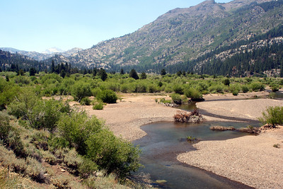 7/7/07 West Walker River, West Walker Trail from Leavitt Trail. Off Sonora Pass Road (Hwy 108), Toiyabe National Forest, Mono County, CA