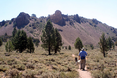 7/7/07 West Walker Trail from Leavitt Trail. Off Sonora Pass Road (Hwy 108), Toiyabe National Forest, Mono County, CA