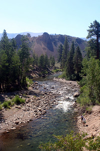 7/7/07 View of West Walker River from Leavitt Meadows Day Use/Trailhead parking area. Sonora Pass Road (Hwy 108), Toiyabe National Forest, Mono County, CA