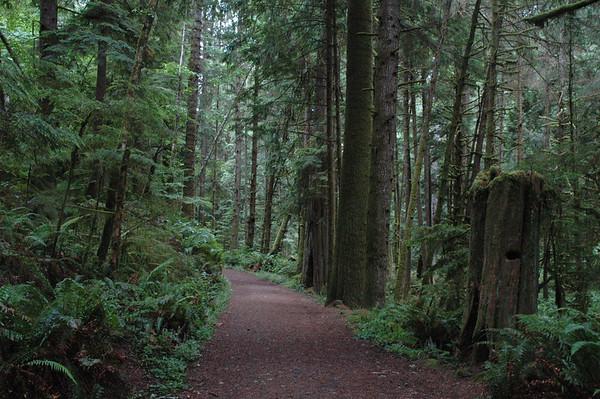 Pike road trail.