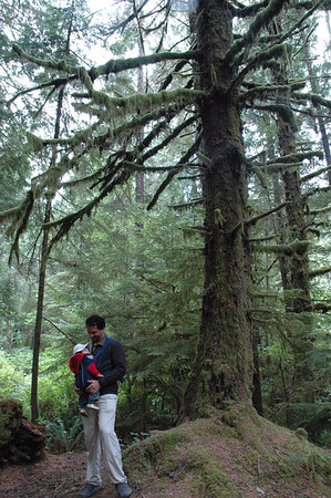 Mik, Jaden and a big mossy tree.