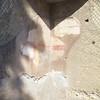 Herculaneum: Cardo V: Remains of frescos