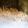 Herculaneum: Old seashore: Bones in storerooms