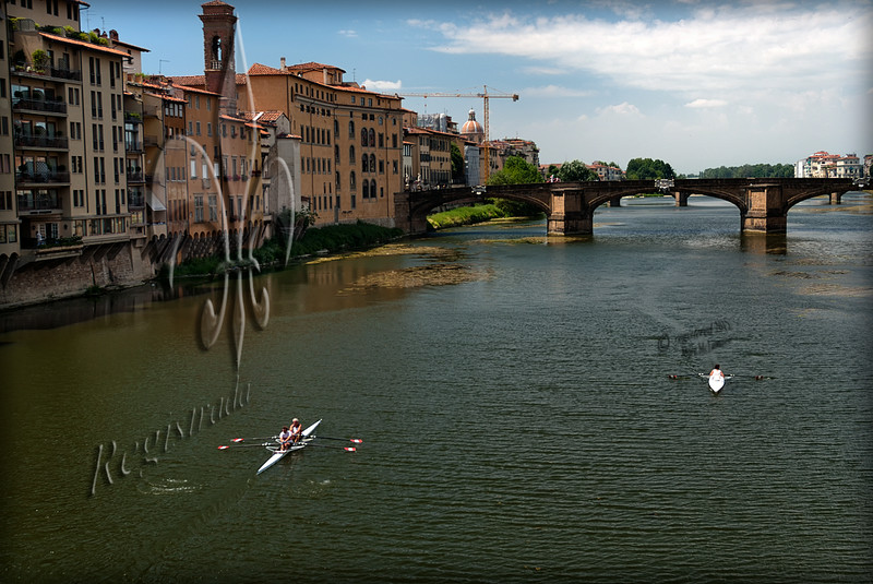 scullers on the Arno