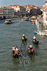 synchronous gondoliers  ...which would be only slightly sillier than some sanctioned synchronized endeavors...