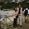 018 Stephen and Cissa Obscuring Penguins