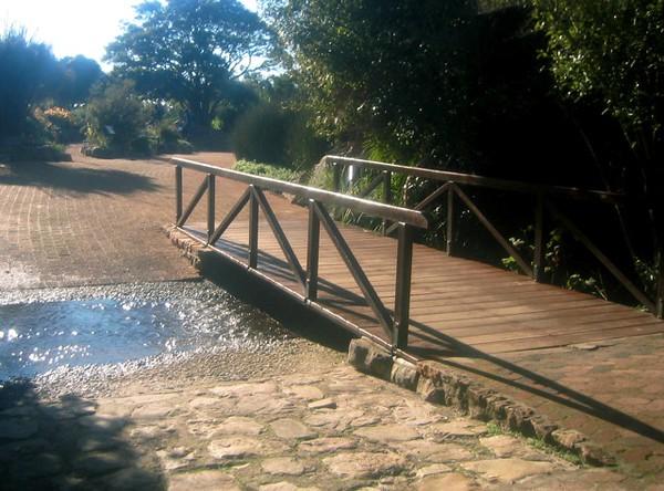 011 Bridge at Kirstenbosch