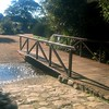 011 Bridge at Kirstenbosch