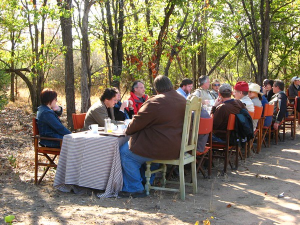 087 Breakfast under the Trees