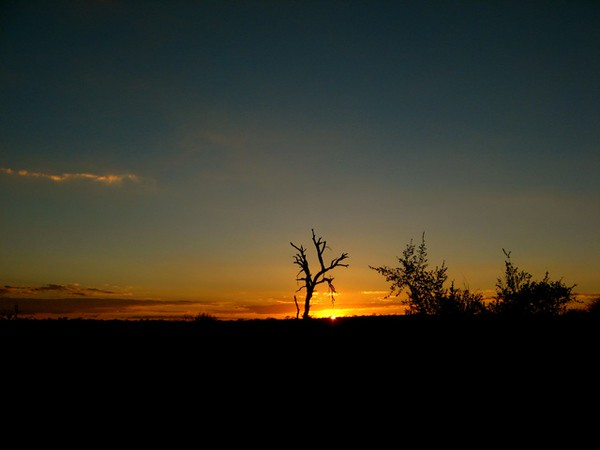 017 June 20 Sunset at Ngala 2