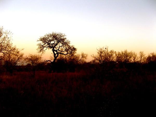 030 Sunrise on the Solstice