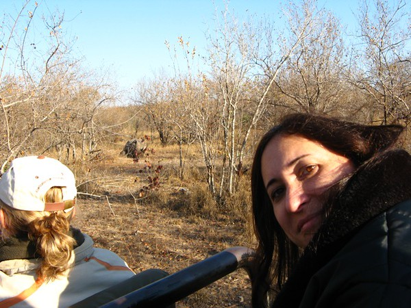 067 Cissa with Rhino