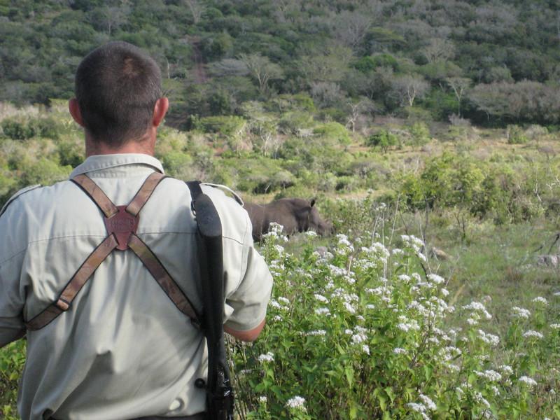 South_Africa_Rhino_03