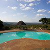 South_Africa_Zulu_Nyala_05