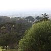 Cape Town seen from Kirstenbosch Botanical Gardens