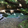 Colonel Bird's Bath, a natural spring