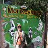Monkeyland is a sanctuary to allow previously caged monkeys, apes and lemurs a free-roaming environment to be reintroduced into a natural environment.