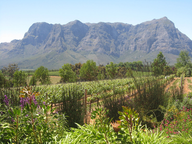 Winelands, Delaire Graff Estate