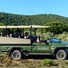 Shamwari - Modified Land Cruiser Safari Vehicle