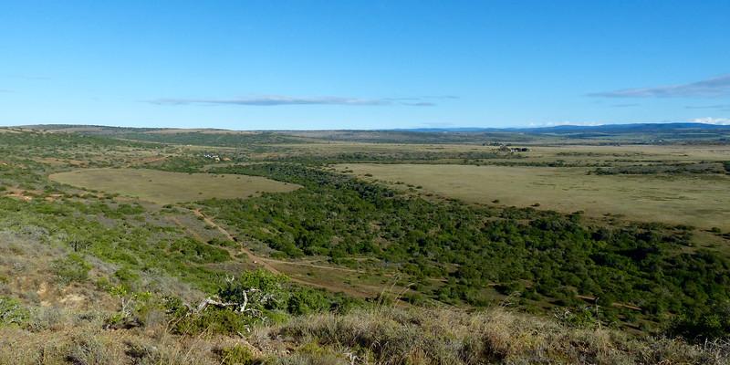 Shamwari Landscape