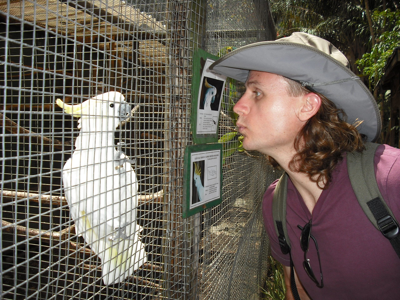 Does it look like I'm trying to kiss that bird?  What the hell am I doing?  I can't remember.