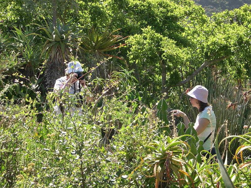 Susan and Liz enjoying the native plants.