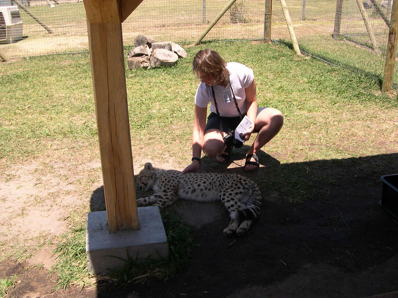 Liz and another cheetah.