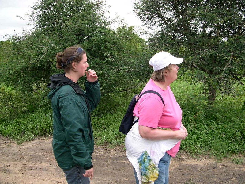 After getting back to the lodge, we took a game walk with Jason to see more animals on foot.  Liz and Susan have caught sight of some animals, and are wondering if a lion is around.