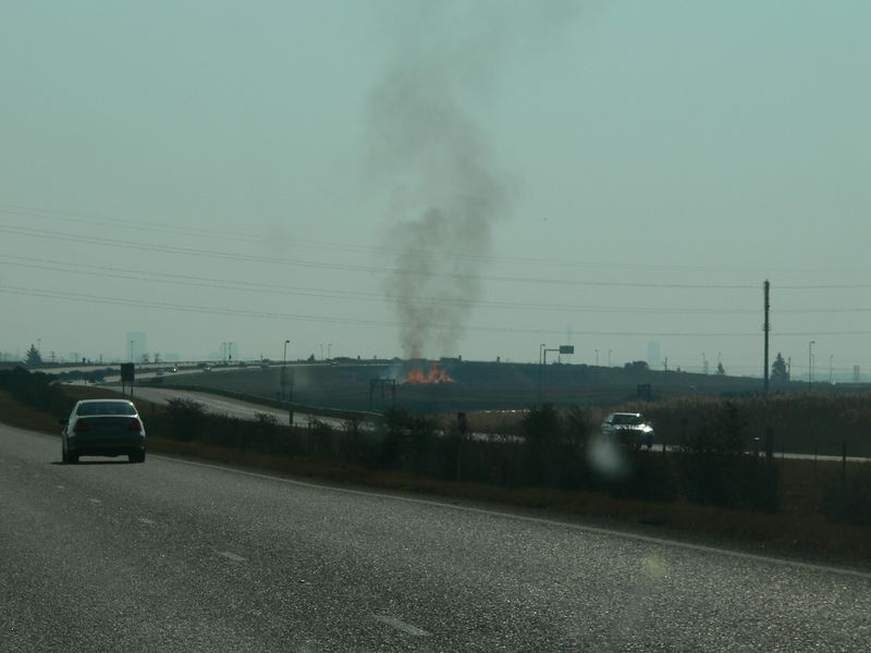 """One of the many  """"controlled burnings"""" we encountered on the side of the road."""
