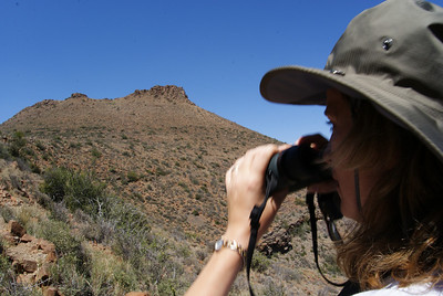The Attache was on the lookout for bird number 50. She was hoping for a black eagle.