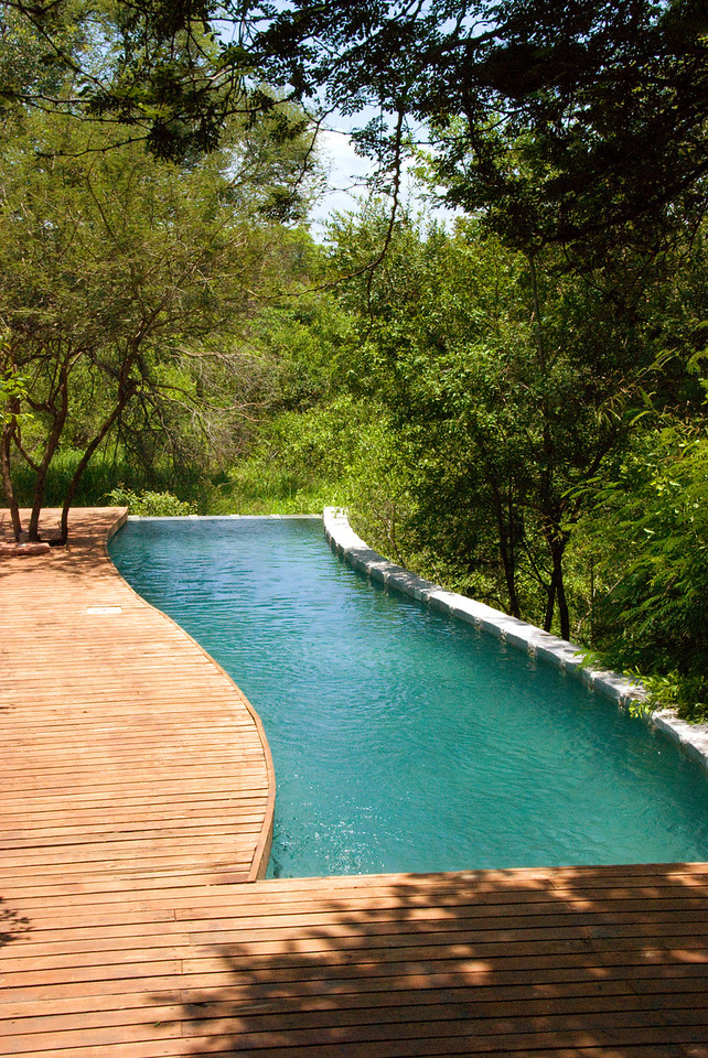 Pool in the Pioneer Camp, Londolozi