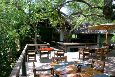 Tree deck in the Founders Camp, Londolozi