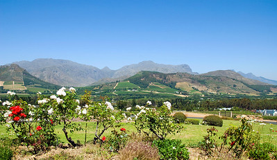 Cape Winelands, Franschhoek, South Africa