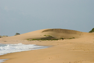 Sand dune at Rocktail Beach Camp.