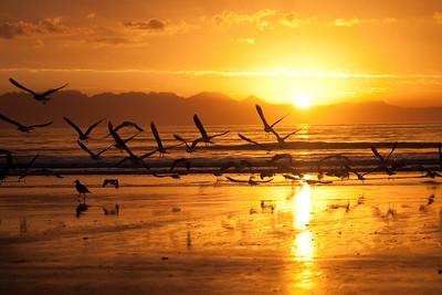 2010.03.26 : Sunrise on Fishoek Beach