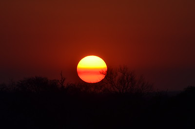 Sunset over Kruger National Park- South Africa……………….[ Copyright © - Photo by Barry Jucha ]