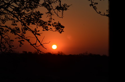 Sunset - Kruger National Park……………….[ Copyright © - Photo by Barry Jucha ]