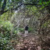 Umhlanga Lagoon Wilderness Trail